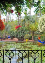 Le jardin des majorelle, Marrakech