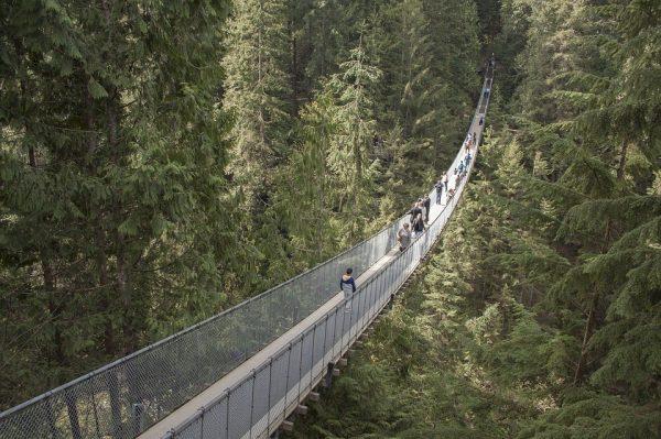 10. Ponte Sospeso di Capilano in Canada