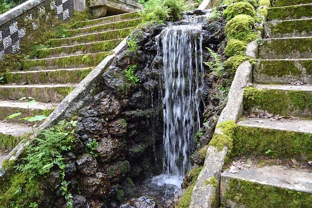 Buçaco giardini Coimbra Portogallo