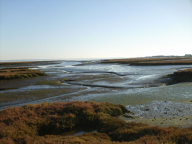 Estuario del Sado Setùbal Portogallo
