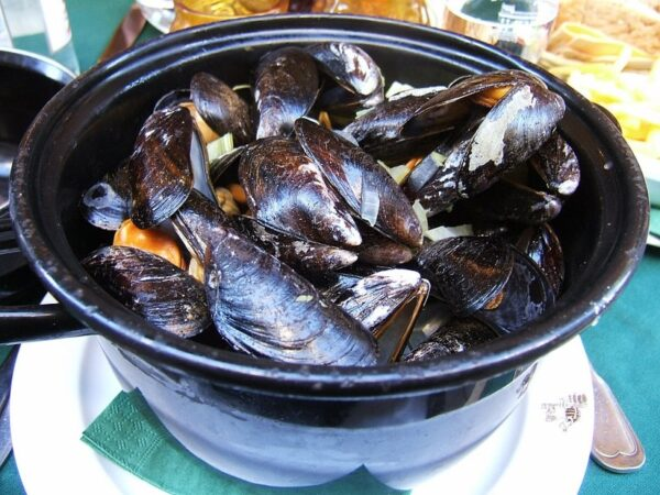 Moules at La Tortue in Brussels